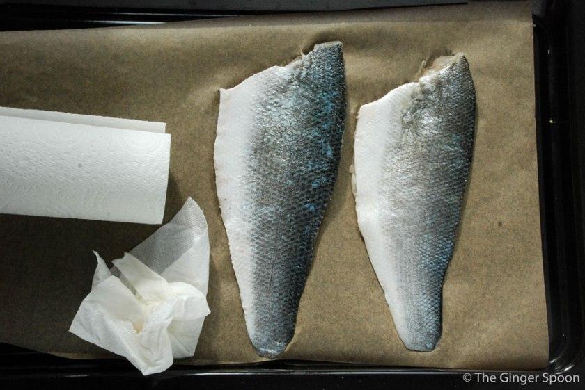 fishskin